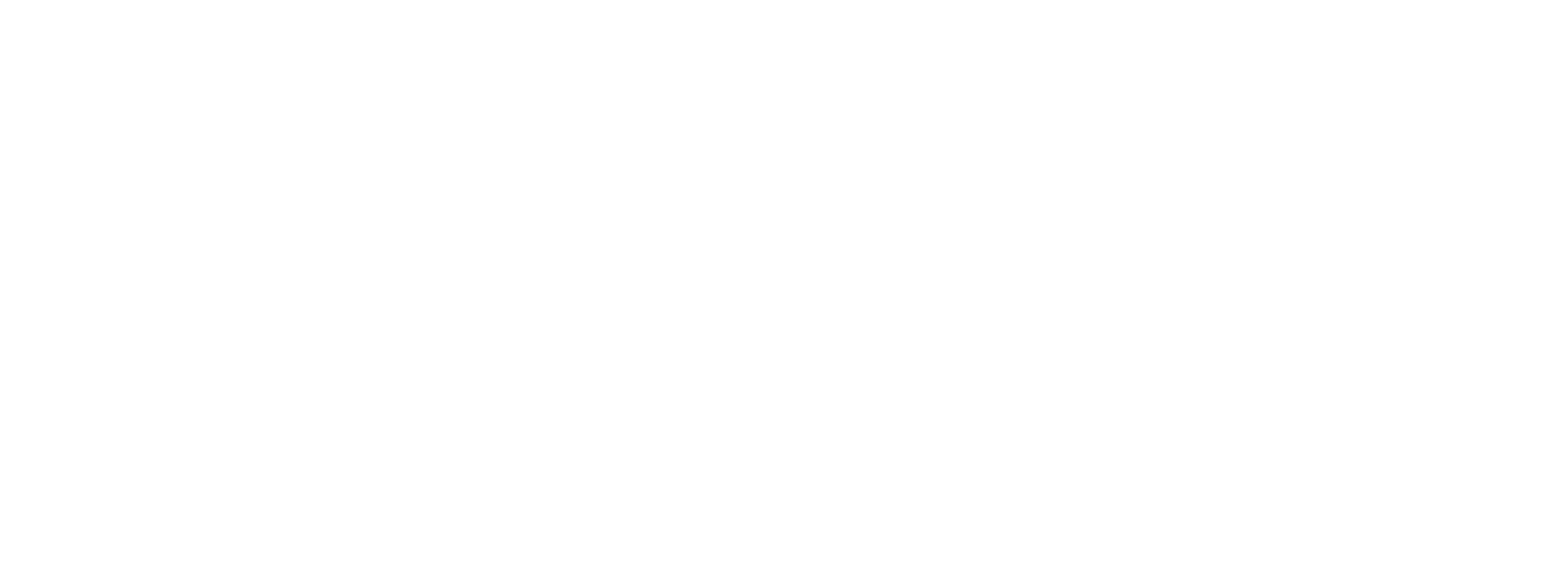 FDK_Logo_2020__weiss